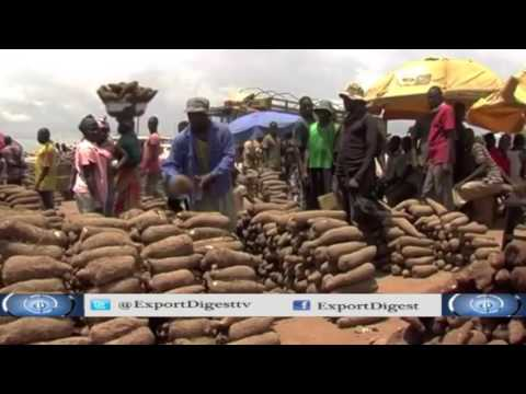 Non-oil Export: Addressing Rejection of Nigeria's Products