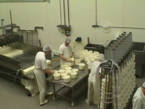 Gouda Cheese Production Using A Prepressing Vat