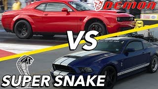 Demon vs Super Snake | AN ARGUMENT BREAKS OUT?!