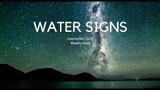 Water Signs (Pisces, Scorpio, Cancer) Weekly Read: New Moon in Virgo