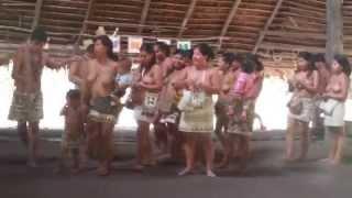 Video La segunda danza de los Boras. The second dance of the boras download MP3, 3GP, MP4, WEBM, AVI, FLV Agustus 2018