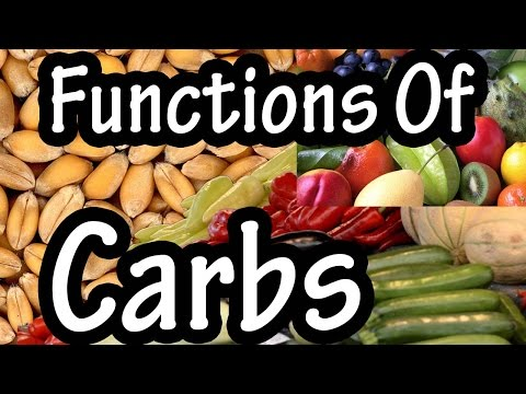 Functions Of Carbohydrates - What Do Carbohydrates Do In The Body - Importance Of Carbohydrates