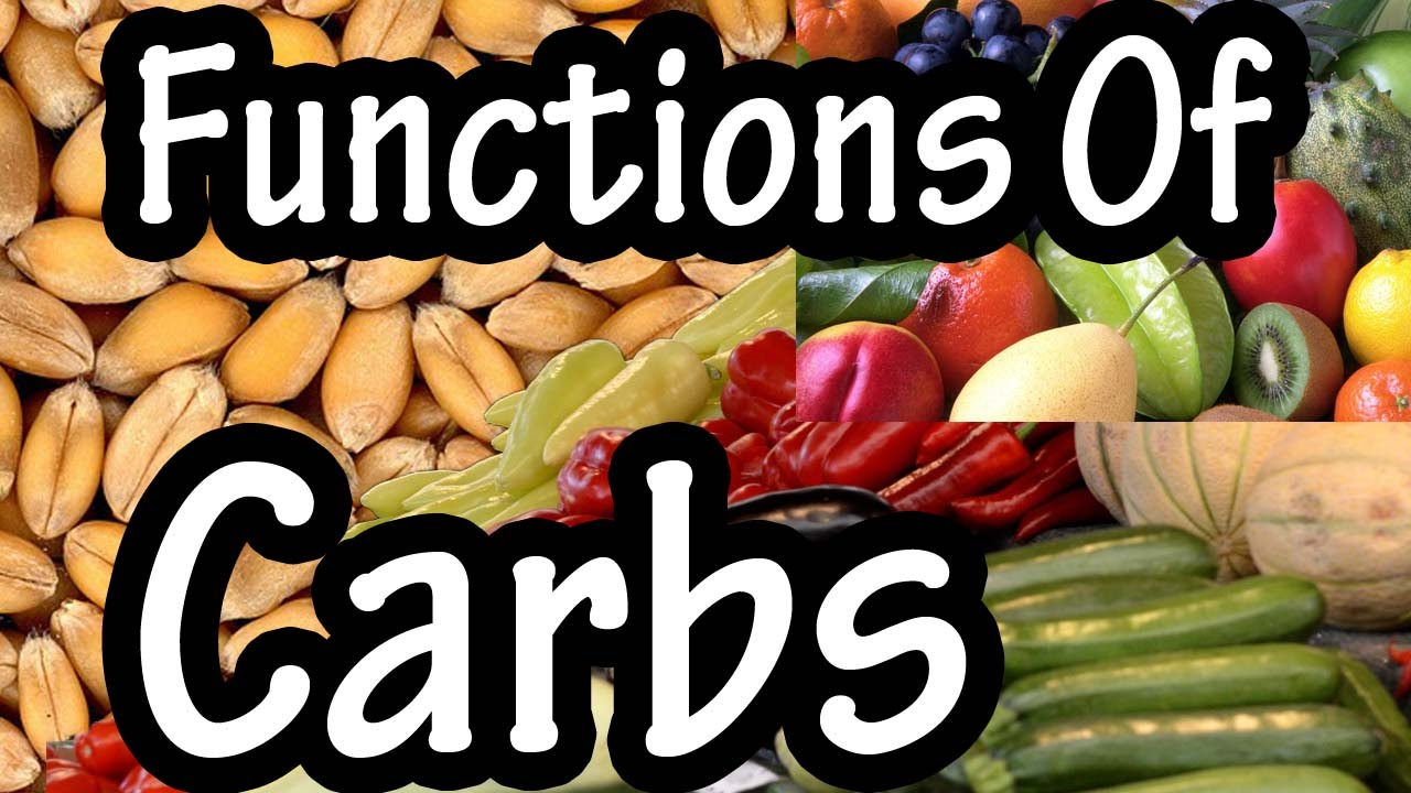 functions of carbohydrates - what do carbohydrates do in the body, Human Body