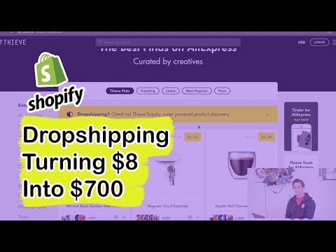 Shopify Dropshipping - Turning $8 into $700