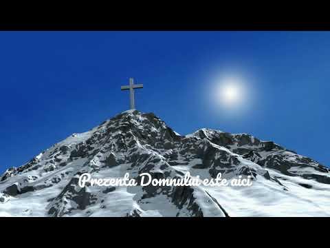 Darius Stanca - E prezenta le Devleski [Official video]