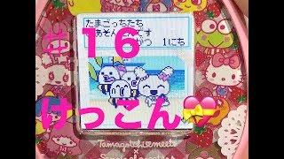 たまごっち みーつ サンリオキャラクターみーつ ♯16 2代目成長中!! ついにあのキャラクターと結婚!!