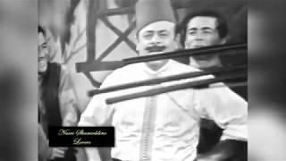 طلوا وطلوا الصيادي - نصري شمس الدين Mix