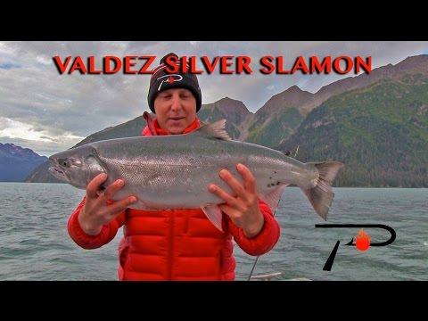 Salmon Fishing Valdez Alaska