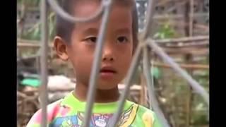 thaiv lis-Niam Txiv Tsis Txawj Sib Hlub