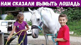 Нам сказали помыть лошадь, Дети 10 лет, Конный спорт, Конюшня в Сочи, Смайли, Smile, 717
