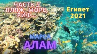 Бюджетный Тур в Египет 2021 Марса Алам отель Fantazia Resort Marsa Alam 5 I Часть 2