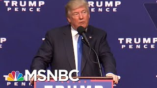 With Census Fight & New Immigration Raids, Trump Returns To Message Of Fear   The 11th Hour   MSNBC