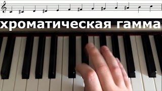 как играть хроматическую гамму
