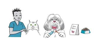 Lombard Veterinary Hospital's Pet Dental Tips!