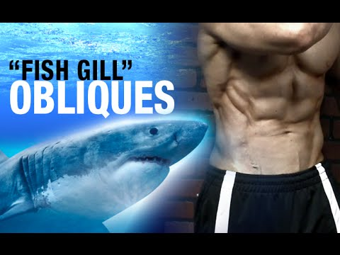 Get SHREDDED OBLIQUES (Fish Gills with One Exercise!)
