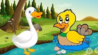 Bé tập nói các con vật   em học tiếng kêu và nhận biết hình ảnh động vật   Dạy trẻ thông minh sớm