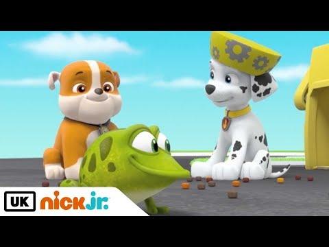 paw-patrol-|-pups-save-a-flying-frog-|-nick-jr.-uk