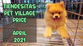 TIENDESITAS PET VILLAGE PRICE April 2021 UPDATE(American Bully, English Bulldog, Bichon Frise &more