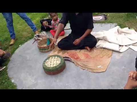 papu pam pam Odia comedy video Viral show 2017.