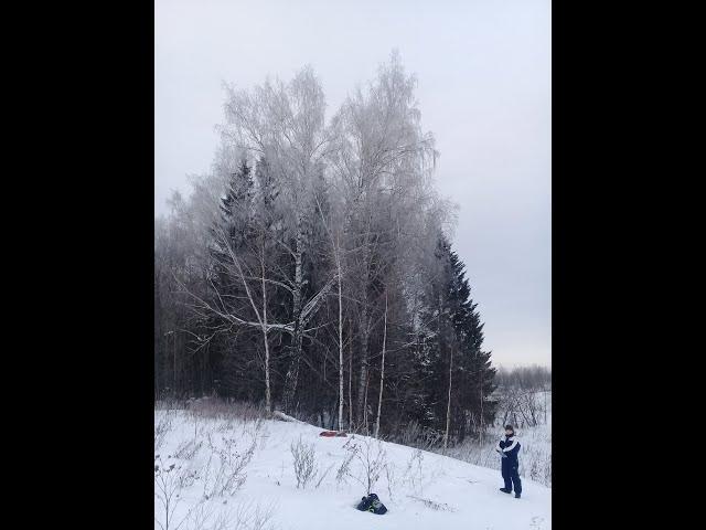 Изображение предпросмотра прочтения – ЕгорСоколов читает произведение «Чародейкую зимой» Ф.И.Тютчева