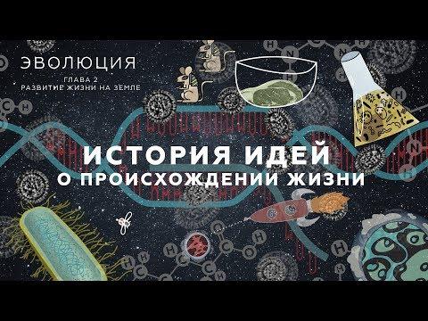 История идей о происхождении жизни. Развитие жизни на Земле - 4