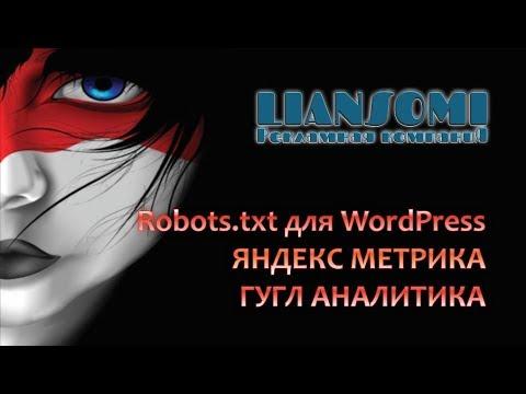 Robots.txt для WordPress, ЯНДЕКС МЕТРИКА, ГУГЛ АНАЛИТИКА для WordPress