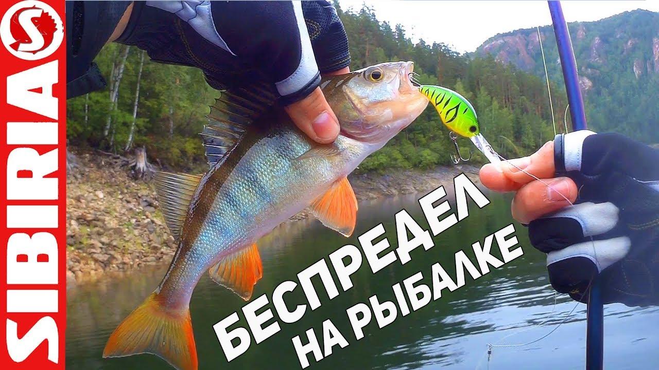 дешевая рыбалка в подмосковье