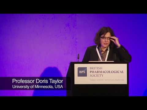 Professor Doris Taylor:  Engineering cell based solutions for cardiovascular diseases