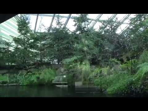 Wilhelma Stuttgart: Das Aquarium-Terrarium - Gemäßigten Zone (12.02.2014)