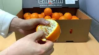 오키농산  오렌지 필러 사용법