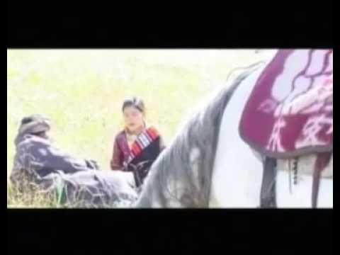 New Tibetan love song 2017