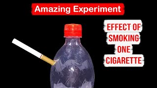 Amazing Experiment: Effect of Smoking One Cigarette on Your Lungs