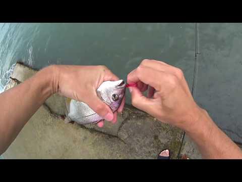 Rockfish 2019 Сочи 25 июля непогода караси Игорь Зинковский
