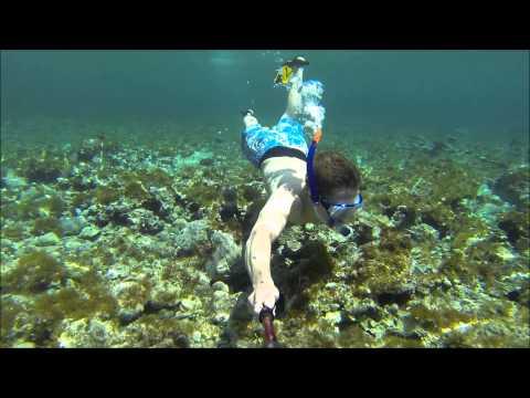 cyprus snorkelling