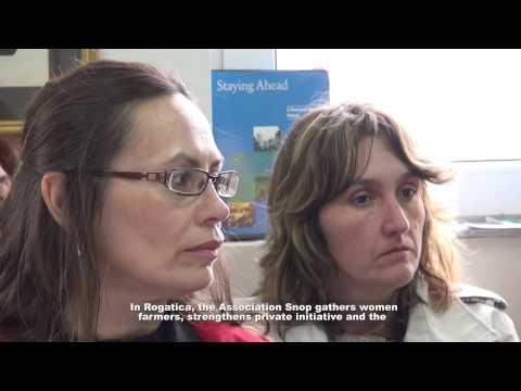 Agende žena iz Bosne i Hercegovine/ Women agendas in Bosnia and Herzegovina