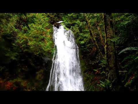 Madison Creek Falls Elwha