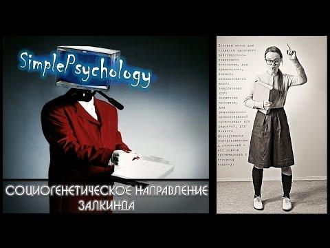Возрастная психология. Социогенетическое направление Залкинда.