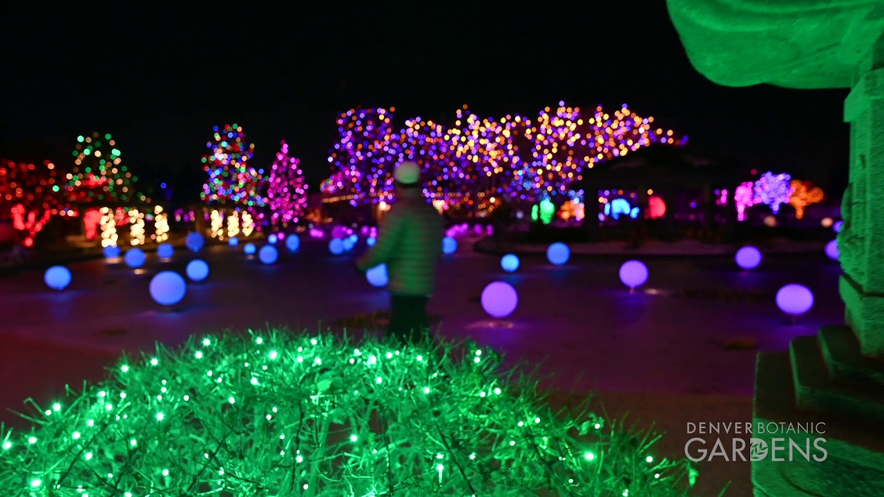 maxresdefault - Blossoms Of Light Denver Botanic Gardens December 10