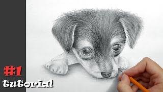 Как нарисовать собаку карандашом - поэтапный обучающий урок.(Это поэтапный урок о том, как рисовать собаку (щенка) карандашом. Этот рисунок на бумаге может показаться..., 2016-09-03T15:48:13.000Z)