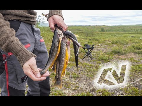 Finnmark Fly Fishing 2017 [ENG SUB]