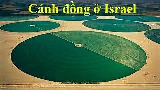 Israel nghèo tài nguyên tại sao vẫn giàu  - Tại sao Mỹ ưu ái Isreal ?