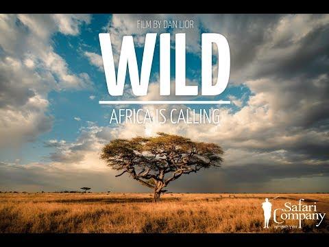 WILD call of Africa