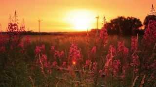 ♫ Yiruma - Stay In Memory V&D