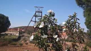 Malacate y Flor de Jara