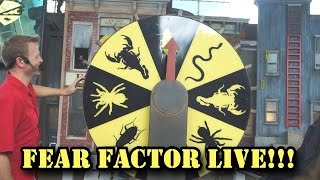 EATING BUGS AT FEAR FACTOR LIVE