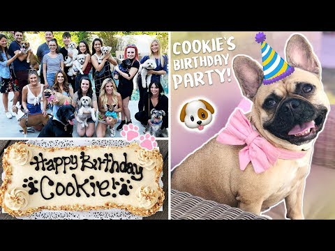 My Dog's EPIC Birthday Party!!!!