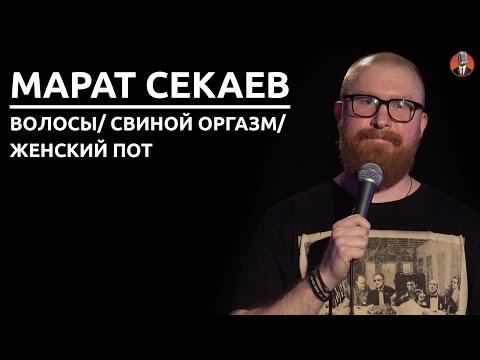 Марат Секаев - Волосы/ Свиной оргазм/ Женский пот [СК#12]