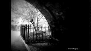 Contigo en la Distancia - Caetano Veloso