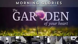 The Garden of Your Heart - Morning Glories