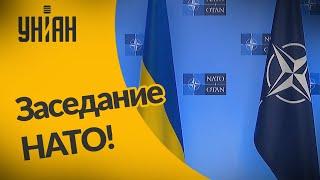В Брюсселе собралось экстренное заседание НАТО по поводу Украины